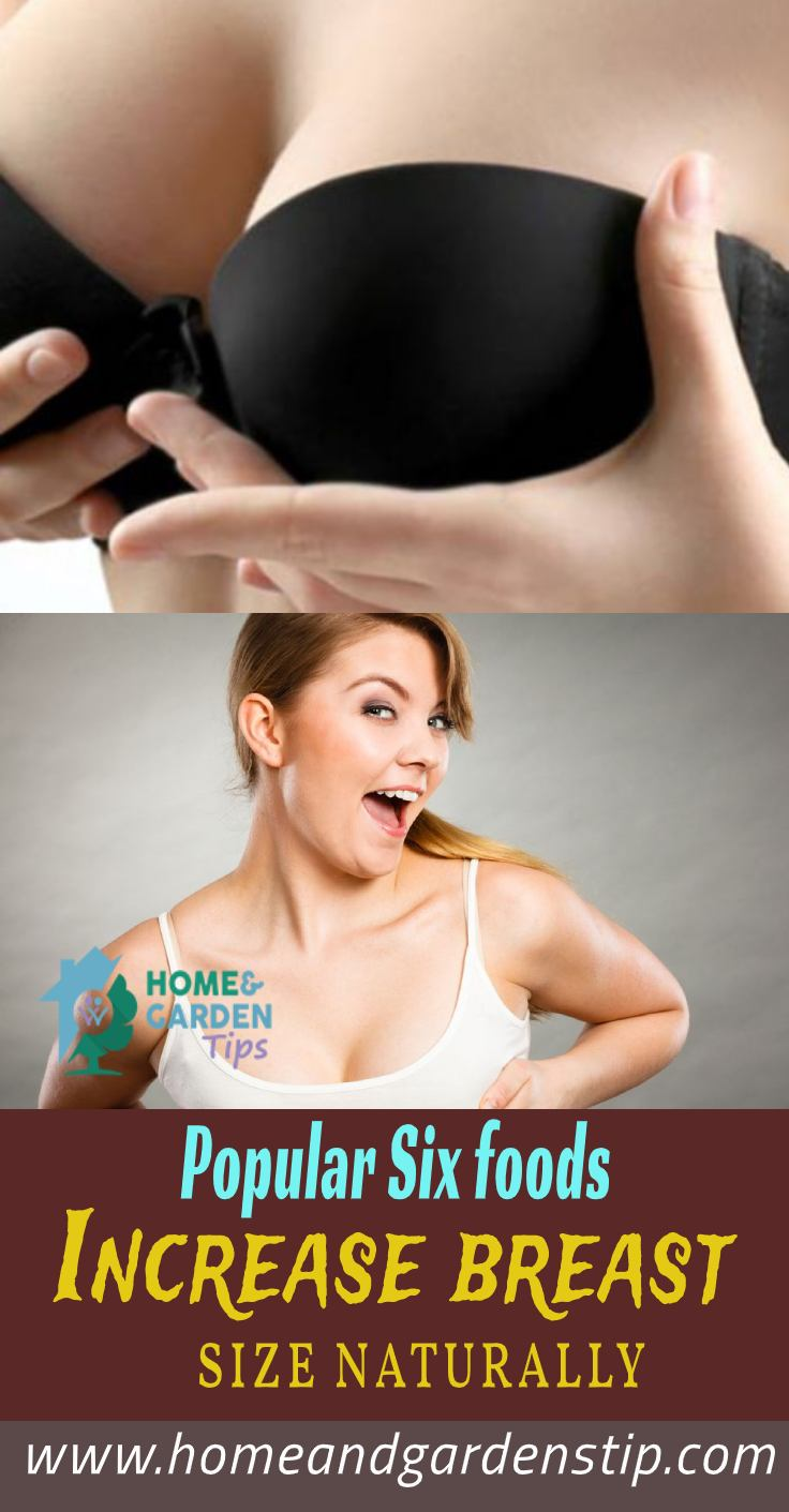 Popular Six foods Increase breast size naturally | Home and Garden Tip