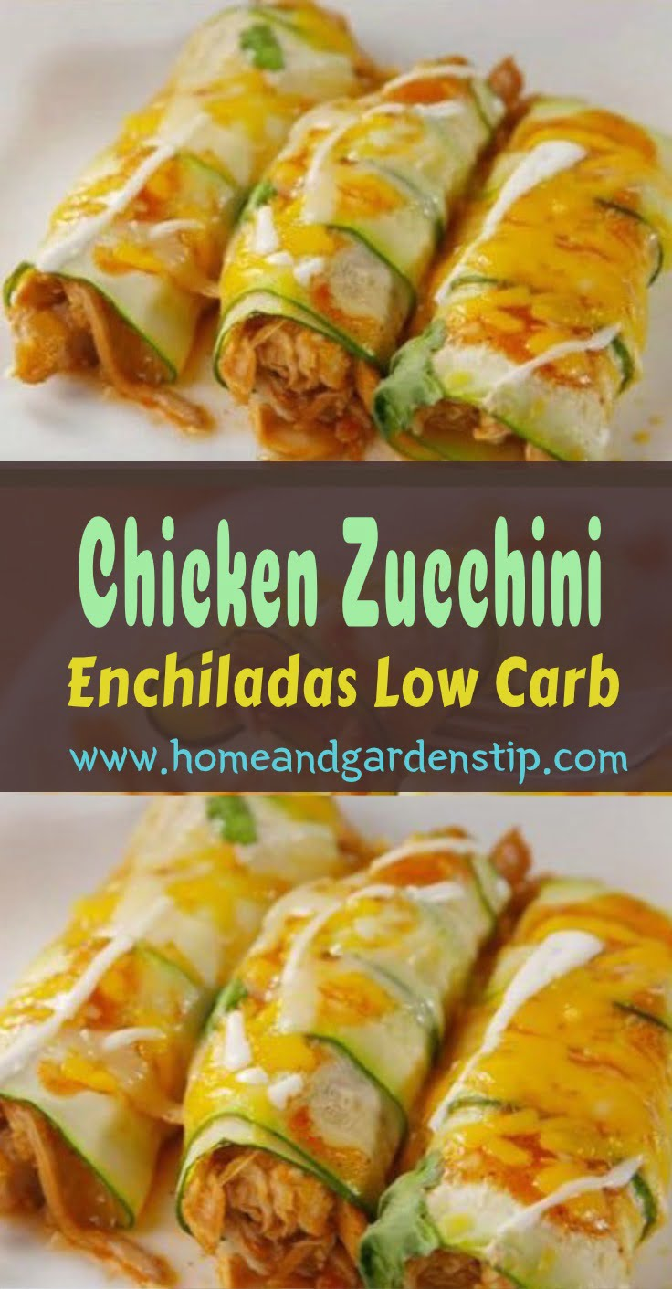 Chicken Zucchini Enchiladas – Low Carb | Home and Garden Tips