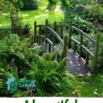 A beautiful garden or a well-groomed yard | Home and Garden Tips