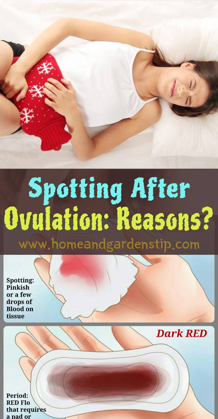 Spotting After Ovulation: Reasons? | Home and Garden Tips