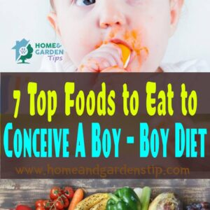 7 Top Foods to Eat to Conceive A Boy – Boy Diet