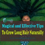 11 Magical and Effective Tips To Grow Long Hair Naturally