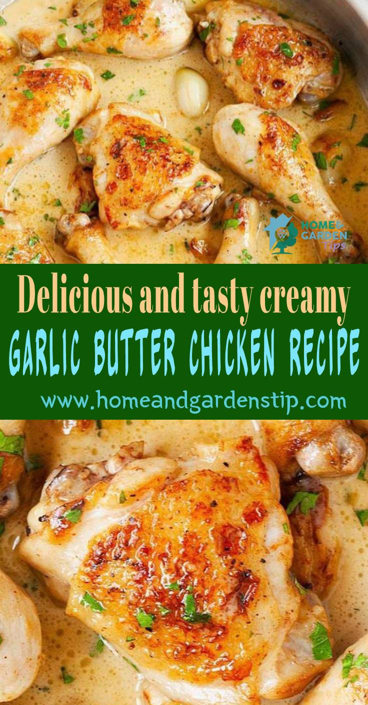 DELICIOUS AND TASTY CREAMY GARLIC BUTTER CHICKEN RECIPE