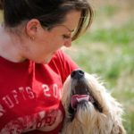 Understanding Dog Training Schools