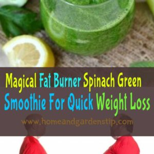 Magical Fat Burner Spinach Green Smoothie For Quick Weight Loss
