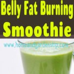 Magical and Effective Belly Fat Burning Smoothie