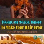 Organic and magical Therapy To Make Your Hair Grow Faster at home