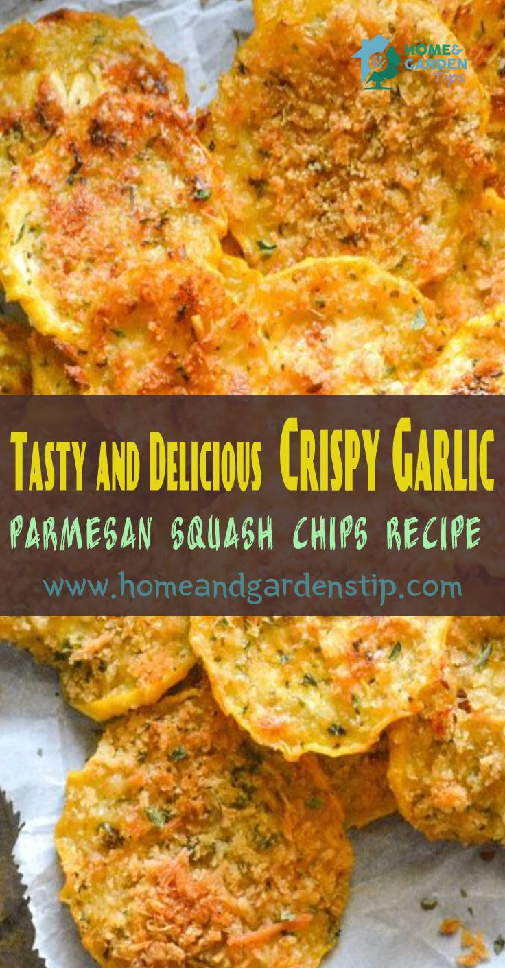 Tasty and Delicious Crispy Garlic Parmesan Squash Chips Recipe