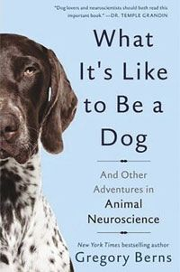 What Is Like to Be a Dog?