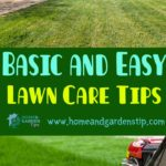 Basic and Easy Lawn Care Tips