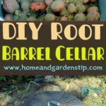 DIY Root Barrel Cellar