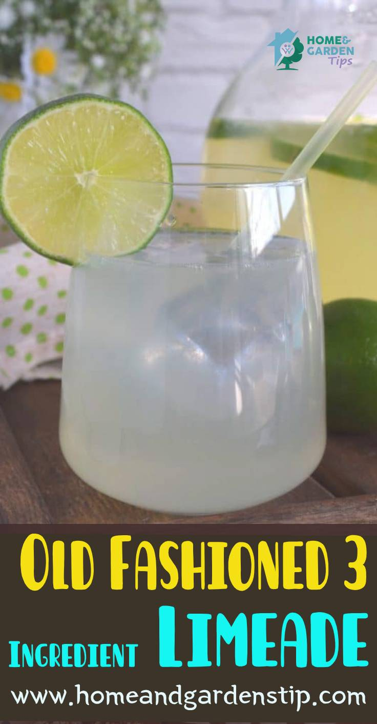 Old Fashioned 3 Ingredient Limeade