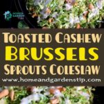 Toasted Cashew and Brussels Sprouts Coleslaw