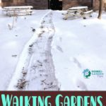 Walking Gardens, Blowing Snow, and Winter Paths