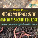 What Is Compost And Why Should You Care