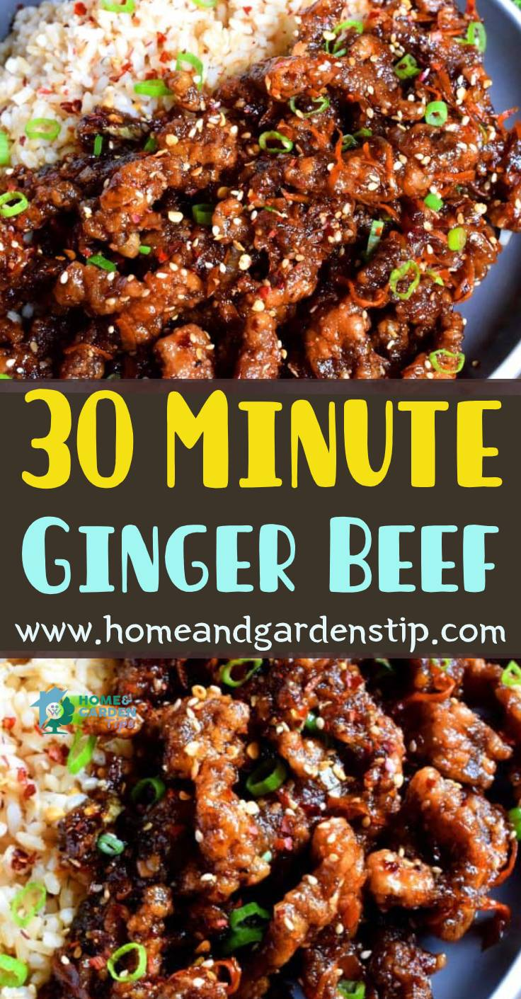 30 Minute Ginger Beef