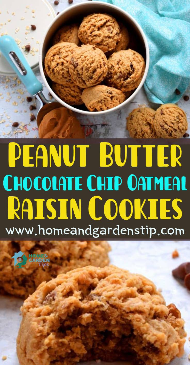Peanut Butter Chocolate Chip Oatmeal Raisin Cookies